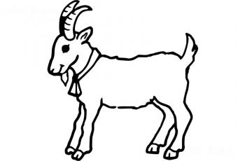 Goat colouring page